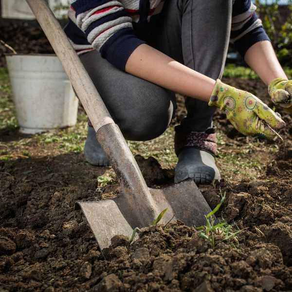 A woman preparing the soil for a vegetable garden