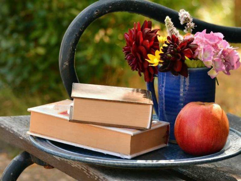 Best Gardening Books for Beginners