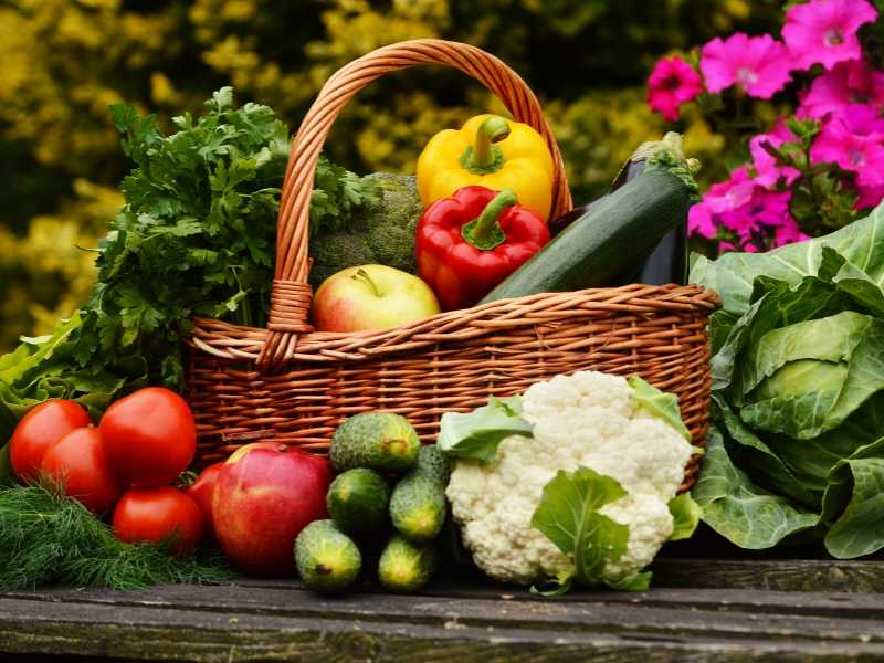 Vegetable gardening for beginners need not be complicated