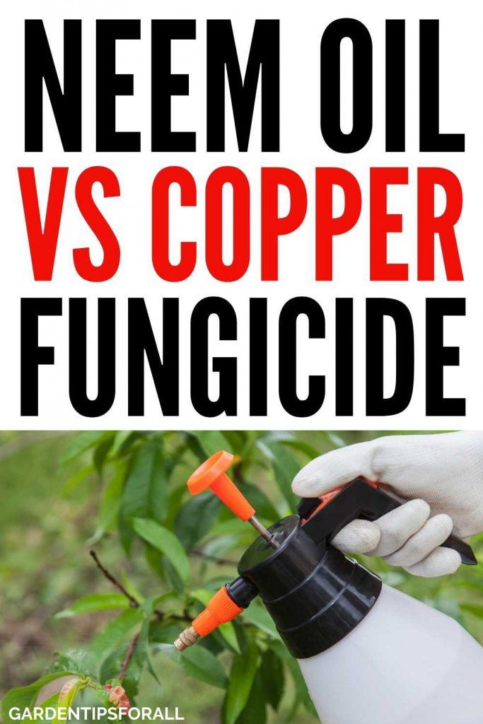 Neem oil vs copper fungicide