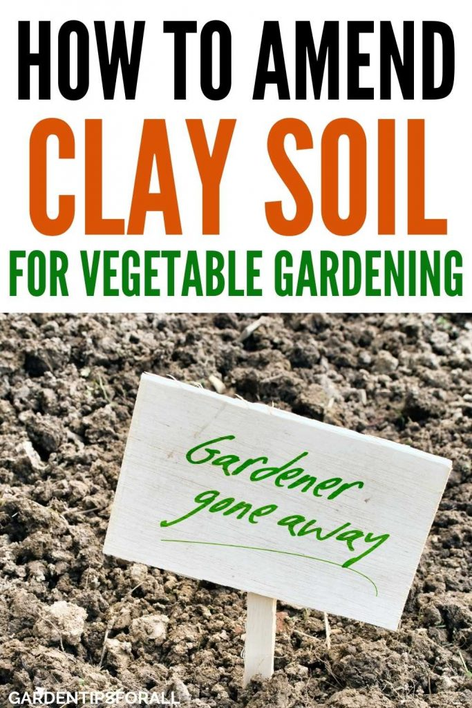 How to improve clay soil for a vegetable garden