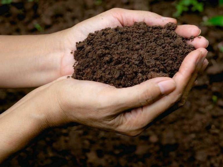 Is Soil a Heterogeneous Mixture?