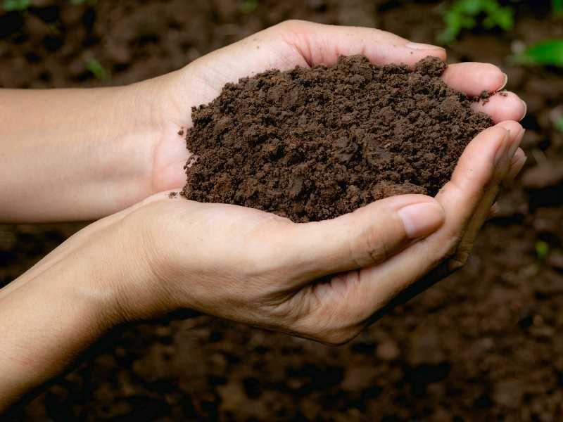 Is soil a heterogeneous mixture