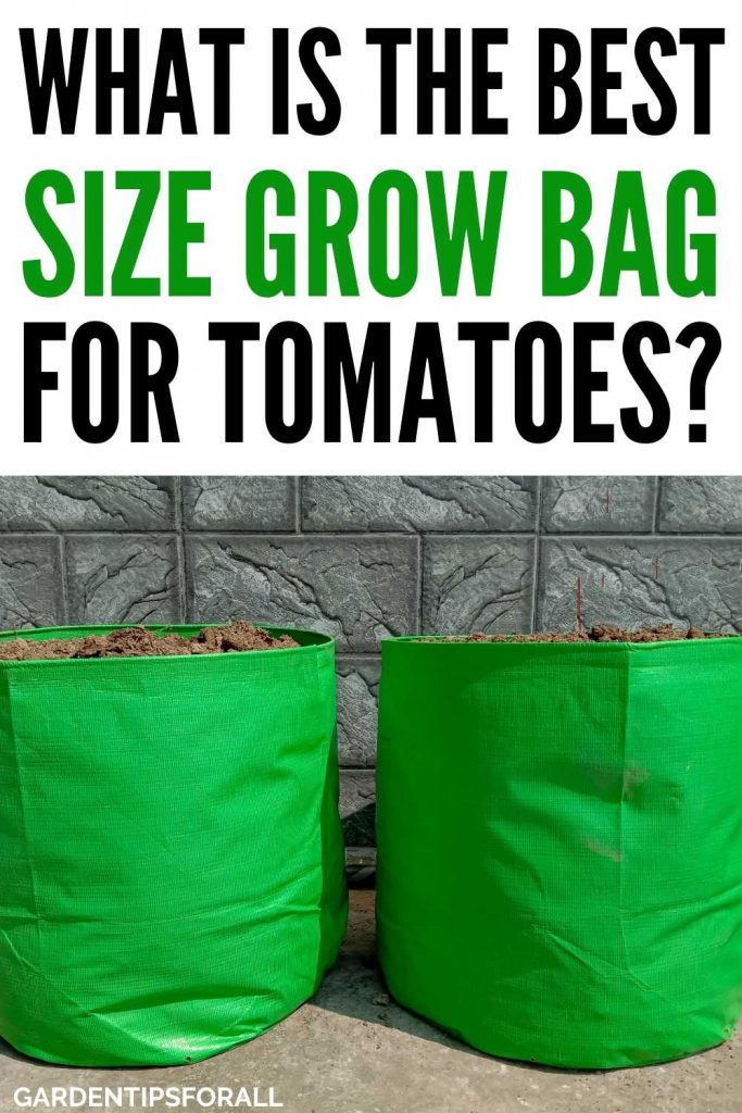 What is the best size grow bag for tomatoes