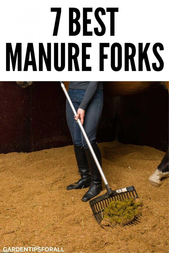 Best rated manure forks